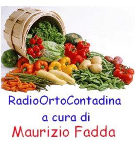 RadioOrtoContadina